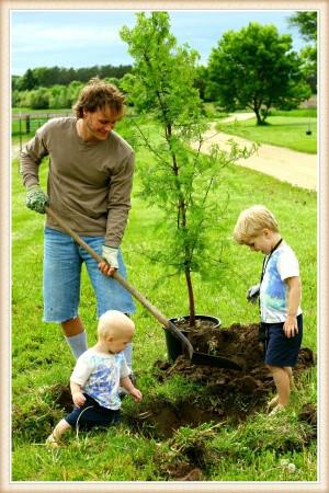 tree-planting-vancouver-wa