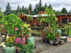 Photo Credit: Cornell Farm