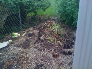 Composting pile.